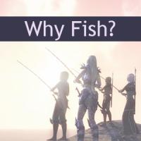 Why fish?